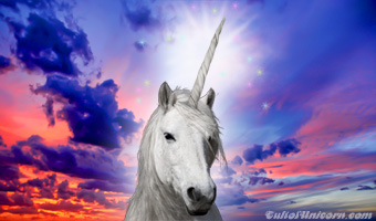 Unicorn-Horn_featured